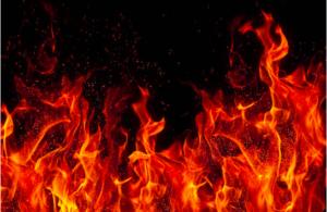 """F.I.R.E. 最 """"火"""" 的財務運動"""